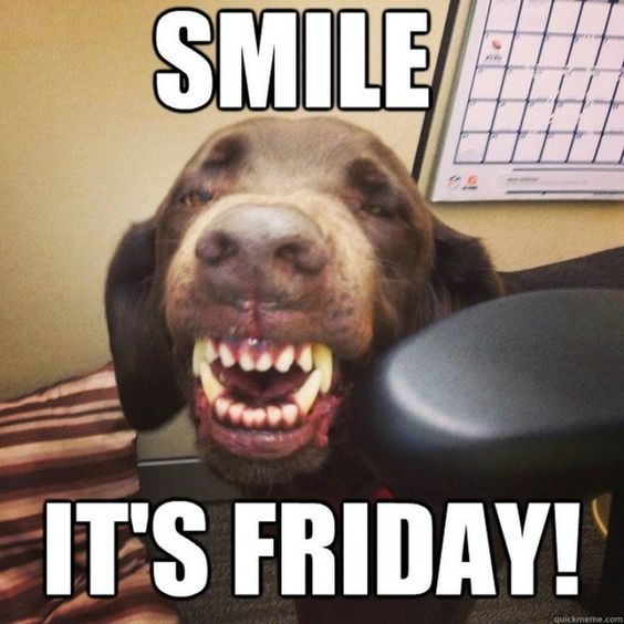 "101 Smile Memes - ""Smile. It's Friday!"""