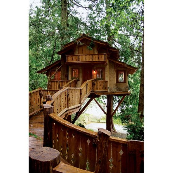Treehouses, Treehouse and Nelson on Pinterest