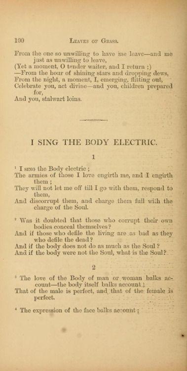 Walt whitman i sing the body electric essay