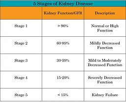 Stages Chronic Kidney Disease Chart End Stage Renal Disease Stage 3 Kidney Disease Kidney Disease Stages