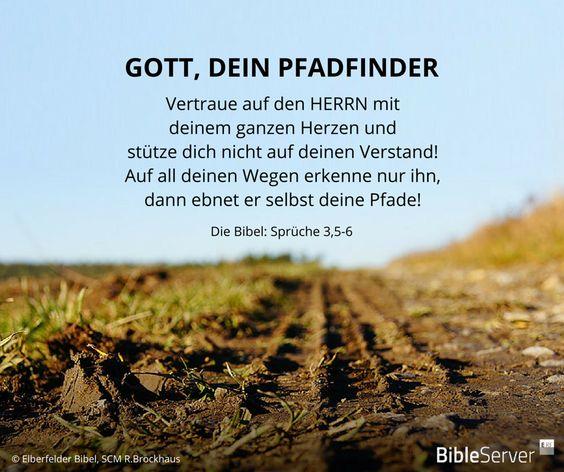 gott, dein pfadfinder | lies den bibelvers auf #bibleserver nach