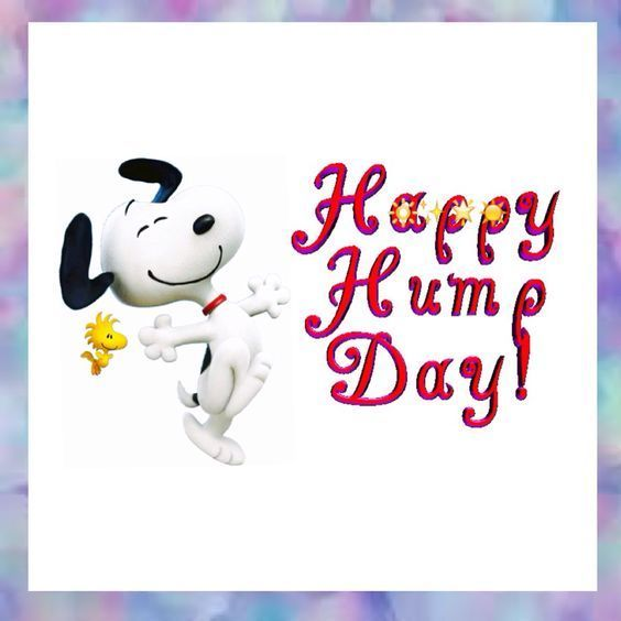 Snoopy Happy Hump Day Wednesday Wednesday Quotes Happy Wednesday Happy Hump Day Wednesday Image Quot Happy Wednesday Quotes Wednesday Hump Day Wednesday Quotes