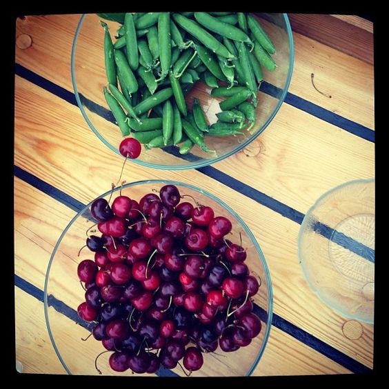 Fresh peas + summer cherries on the MARS sailing trip #marsinfinland