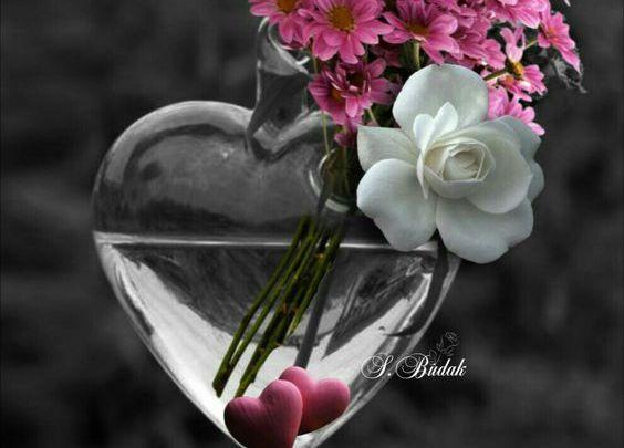 اجمل صور حب عليها قلوب وزهور متحركة Glass Vase Decor Vase