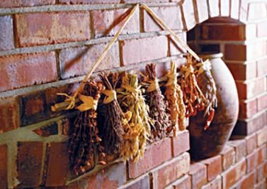 Some herbs can be dried by the traditional bunching method. (Great info at this site)