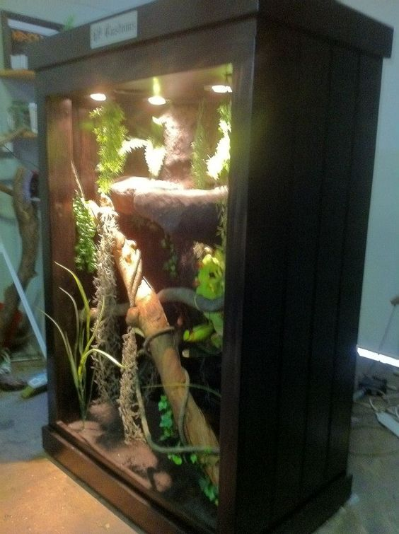 H P Reptiles Reptile enclosu...