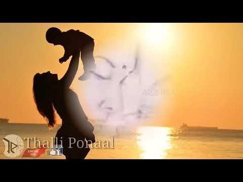 Kangal Neeyae Kaatrum Neeyae Song From Muppozhudum Un Karpanaigal Whatsapp Status Youtube Audio Songs Songs Download Video