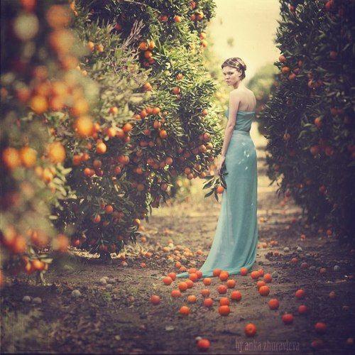 Tss... nicht rumstehen - bitte die Orangen aufsammeln und dann schnell auspressen!