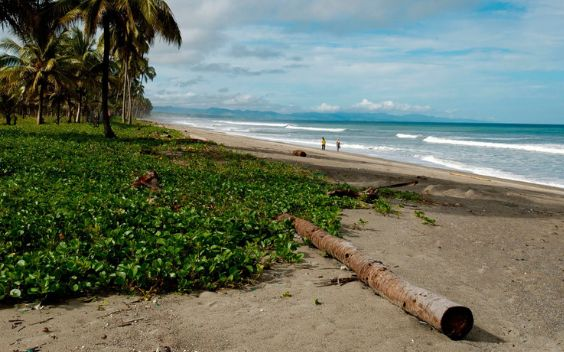 Beach towns in Ecuador: what to visit and discover