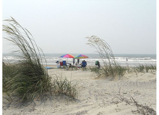 Isle of palms south carolina isle of palms pinterest for Southern living login