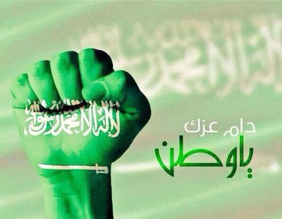 حماك الله يااطهر بلد bd0886a576d1045dc9532a339ec38d04.jpg