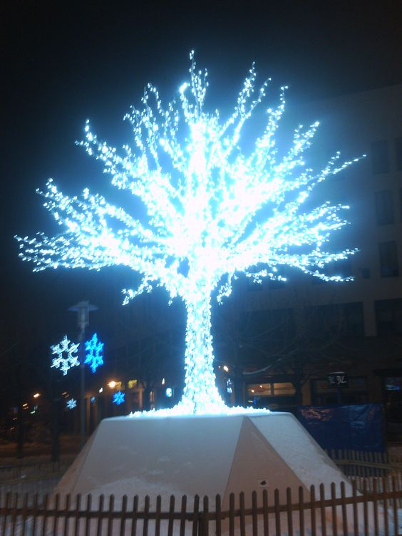 unser Winter Baum