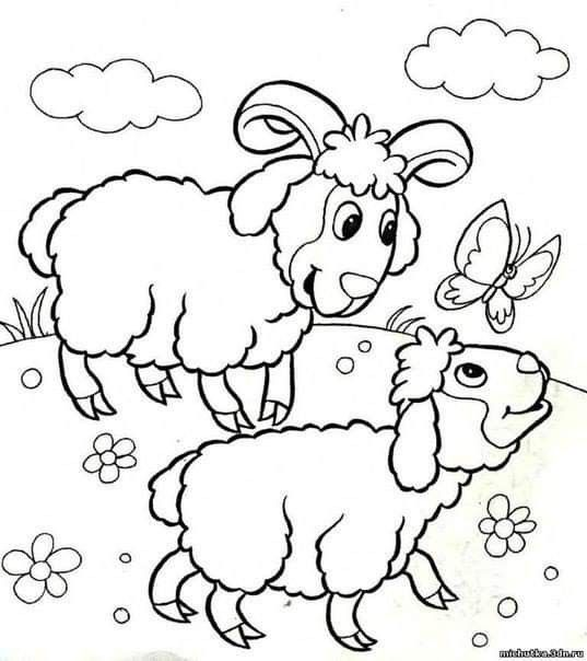 Pin By Teona 08 On Zhivotni I Ptici Farm Animal Coloring Pages