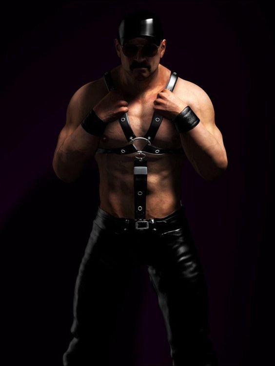 #LeatherHarness