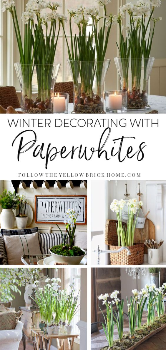 Beautiful ideas for decorating with paperwhites from winter through spring