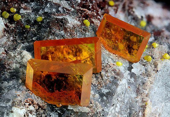 underthescopemin:  Wulfenite,Mimetite Orange Wulfenite crystals with yellow Mimetite balls. Photo Copyright © Chinellato Matteo