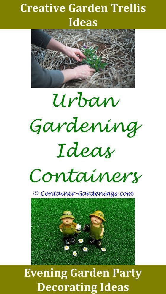 bd1b3bf5552096c325212acc693d2483 - Which Plastics Are Safe For Gardening