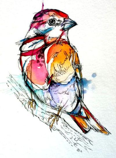 Really Adorable Sparrow  by Abby Diamond