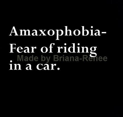Phobias   WS Words: Phobias   Pinterest   Phobias