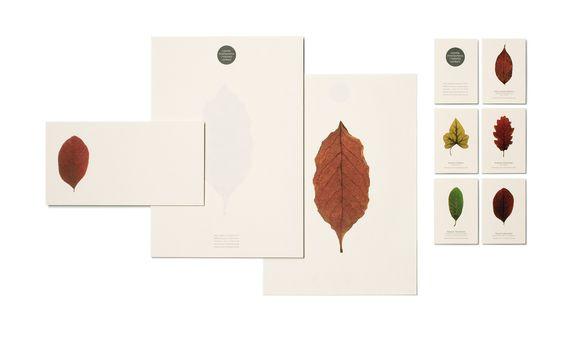 COTG / Identities & Logotypes / Graphic / Estudi Conrad Torras / Comunicació gràfica