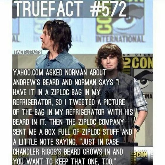 The Walking Dead True Facts Bd20d66a582e7980c1b9ca11359ec1a6