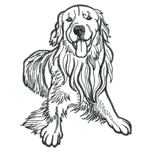 Pin By Jane Perry On Coloring Pages Golden Retriever Outline Dog Outline Golden Retriever Drawing