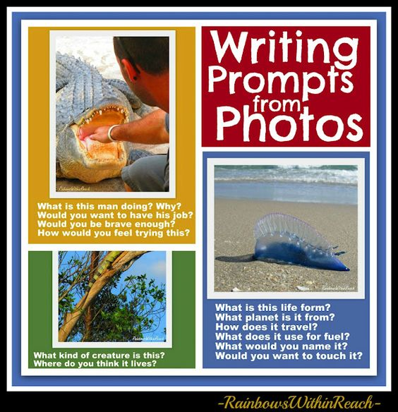 Writing Prompts from Photographs: Alligator, Iguana, Man of War and more!