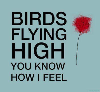 It's a new dawn, it's a new day, it's a new life for me and I'm feeling good... Nina Simone