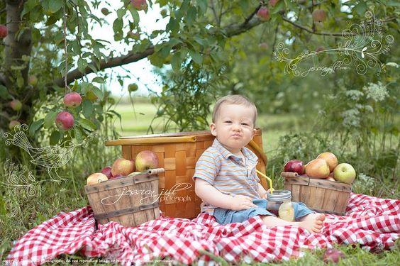 Aller cueillir des pommes. C'est fait !