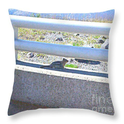 Golden Mantled Ground Squirrel Throw Pillow by Shelly Weingart