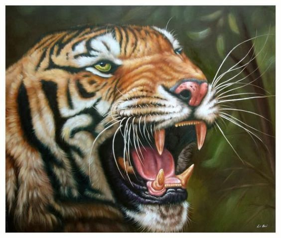 Modern art CONTEMPORARY hand painted Oil Painting on Canvas Animals Tiger