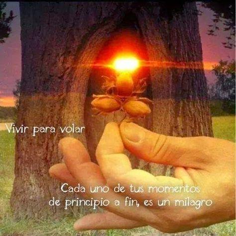 ===La magia se siente, se vive...=== - Página 2 Bd4881e17f71fe5df79c7957140c06d5