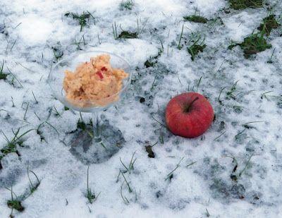 Apfel-Granita mit Schuss - http://barbaras-spielwiese.blogspot.de