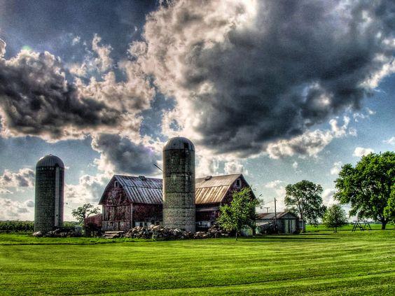 Surreal farm.