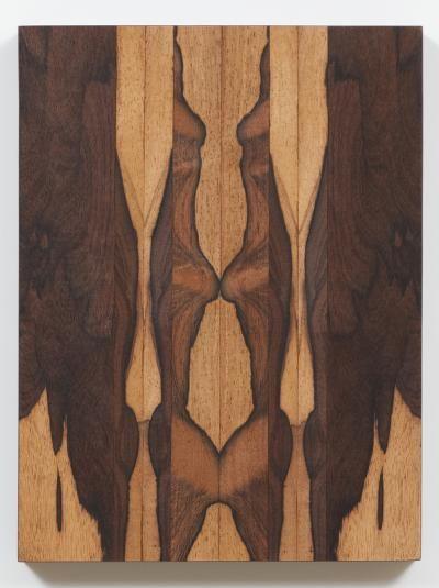 Artista - Obras Selecionadas de | Galeria Nara Roesler