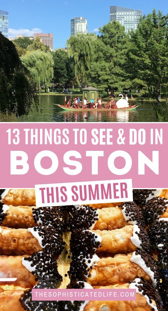 13 Fun Interesting Things To Do In Boston This Weekend Boston