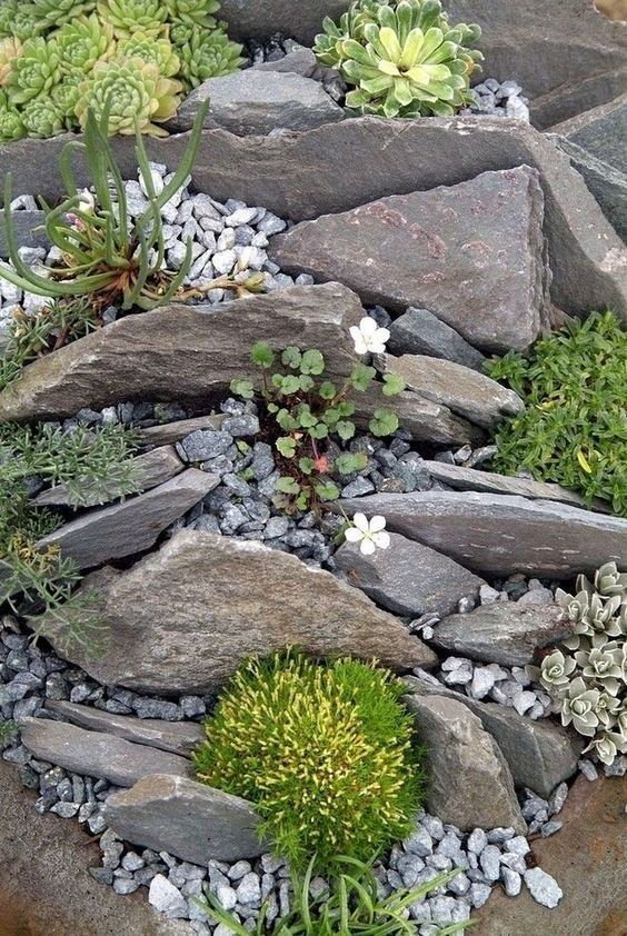 41 Awesome Diy Rock Garden Ideas For Backyard 15 Maanitech Com Rockgardenideas Backyard Backyard Rock Garden Design Rockery Garden Rock Garden Landscaping
