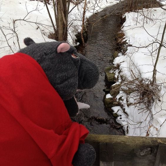 On his hike this afternoon, Harvey observed one of the first signs of spring: melt off is starting to flow through the outlet of Sky Lake on its way to the Delaware River! What's your favorite sign of spring? #lentoutside #skylake14 #delawarewatershed