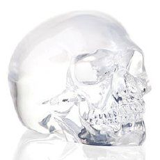skull candle holders: Clear Glass, Stuff Ty, Skull Candle, Candle Holders, Crystal Skull, Light