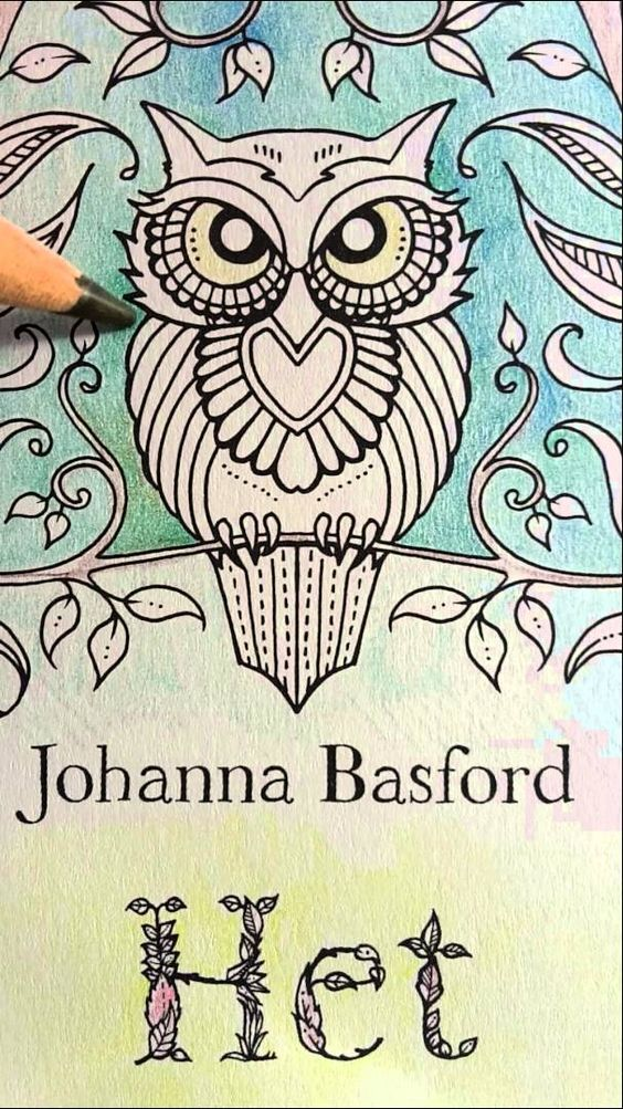 Colouring Enchanted Forest The First Page Part 1