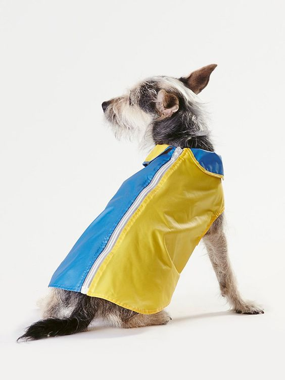 even your pup needs a rain jacket