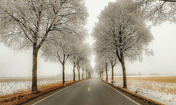 Bavarian country road - Klaus Bochem