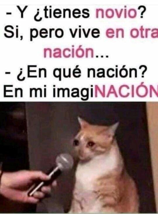 Pin De Keren Velasquez Valenzuela En Remedio Infalible Memes Divertidos Chistes Geniales Memes Graciosos De Amor
