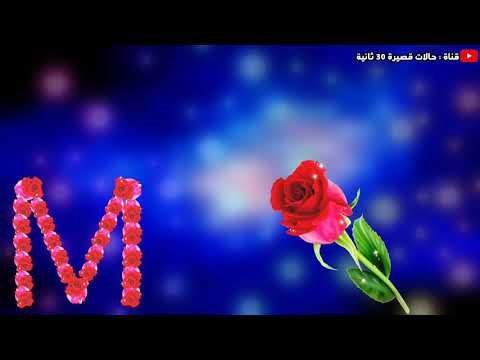 حالات واتساب عن الحب حرف M احبك Youtube Good Morning Love Video Love Wallpapers Romantic I Love You Images