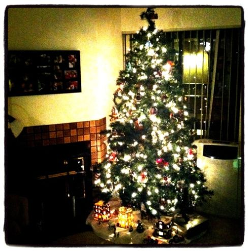 And...the tree is up!