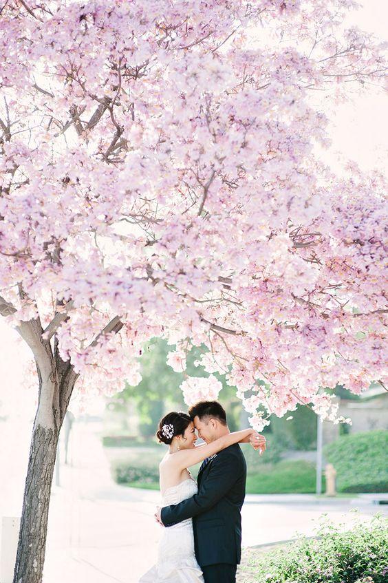 Cherry Blossom wedding: