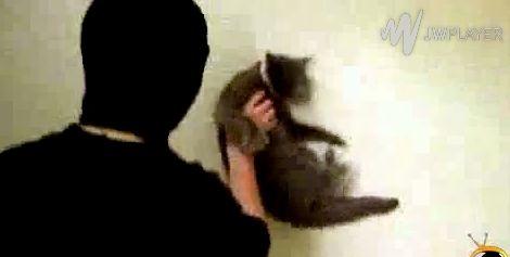 Immer neue kranke Menschen wollen Aufmerksamkeit und lassen ihre psychischen Probleme an Tieren aus. Hier ist schon wieder jemand der seine gestörte Persönlichkeit an einer Katze auslässt. Der TNBB e.V. (Tier- und Naturschutzbund Berlin-Brandenburg e.V.) macht diesmal ganz bewusst auf dieses Video a