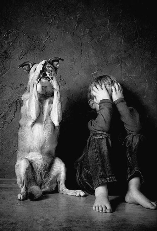 目をおおう犬と赤ちゃん