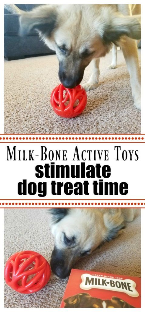 Milk Bone Active Toys Stimulate Dog Treat Time Dogs Cats