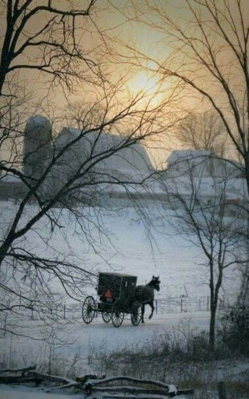 Winter Barn & Amish Buggy: